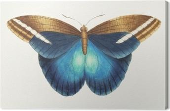 Canvastavla Illustration av djur konstverk