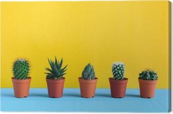 Canvastavla Kaktus på skrivbordet med gul wal