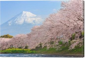 Canvastavla Körsbärsblommor eller sakura och berg fuji i bakgrunden