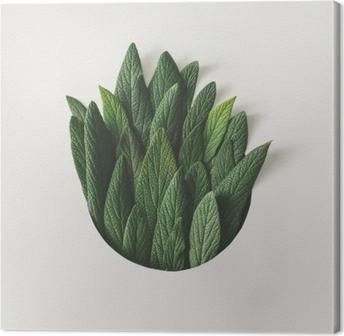 Canvastavla Kreativ minimal arrangemang av gröna blad. natur begrepp. platt låg.