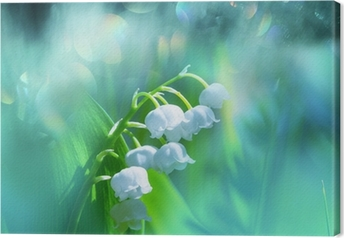 Canvastavla Lily-of-the-dalen