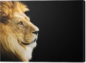 Canvastavla Lion porträtt med kopia utrymme på svart bakgrund