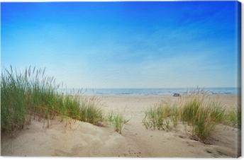 Canvastavla Lugn strand med sanddyner och grönt gräs. Lugna havet