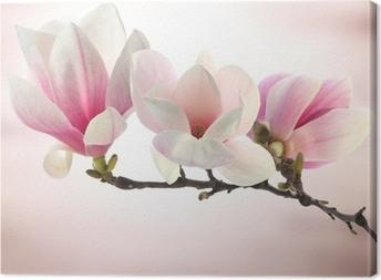 Canvastavla Magnolia