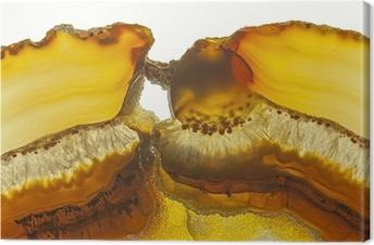 Canvastavla Närbild av en skiva Agate Gemstone