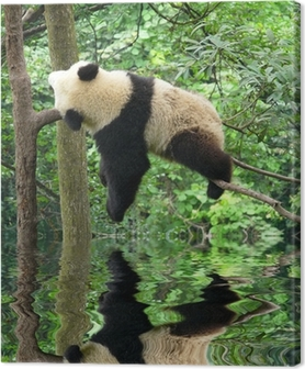 Canvastavla Panda