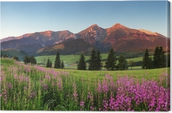 Canvastavla Skönhet bergspanorama med blommor - Slovakien