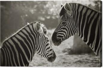 Canvastavla Stående för zebra s, sepia look