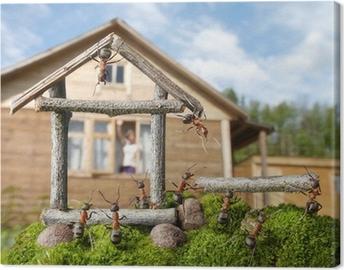 Canvastavla Team av myror konstruerar hus, teamwork