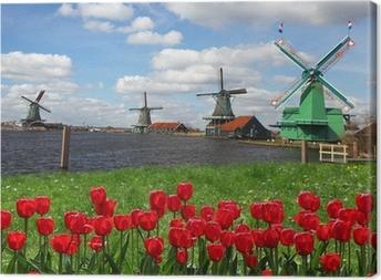 Canvastavla Traditionella holländska väderkvarnar med röda tulpaner, Amsterdam, Holland