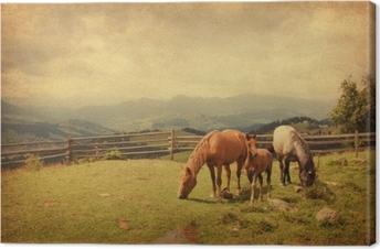Canvastavla Två hästar och föl i ängen. pappersstruktur.