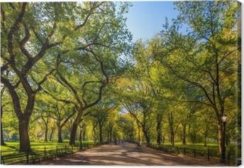 Canvastavla Vacker park i vacker stad..central park. köpcentret i centrala parken på hösten., New York City, USA