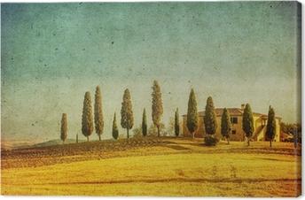 Canvastavla Vintage toskanska landskapet