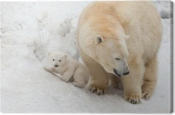 Canvastavla Vit björn