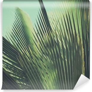 Carta da Parati in Vinile Abstract tropical background vintage. Foglie di palma al sole.