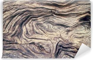 Carta da Parati in Vinile Albero corteccia struttura di legno