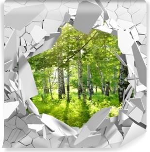 Carta da Parati Autoadesiva Buco nel muro - Estate. foreste di betulle.