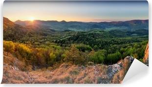 Carta da Parati Autoadesiva Slovacchia primavera panorama della foresta