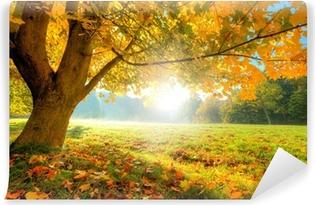 Carta da Parati in Vinile Bellissimo albero autunno con foglie secche cadute