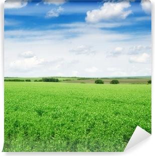 Carta da Parati in Vinile Campo Pea e cielo blu