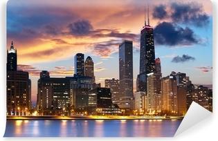 Carta da Parati in Vinile Chicago skyline