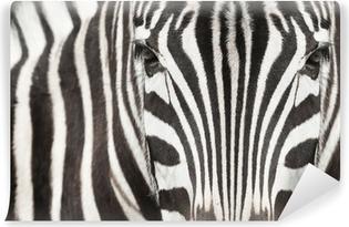 Carta da Parati in Vinile Close-up della testa di zebra e del corpo con una bella motivo a righe