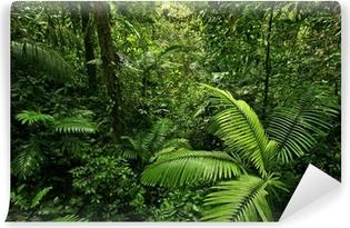 Carta da Parati in Vinile Densa foresta pluviale tropicale