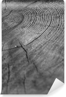 Carta da Parati in Vinile Di legno