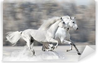 Carta da Parati in Vinile Due cavalli bianchi in inverno corrono al galoppo