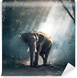 Carta da Parati in Vinile Elefante