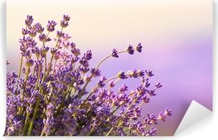 Carta da Parati in Vinile Fiori di lavanda fioriscono periodo estivo