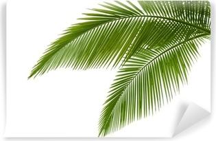 Carta da Parati in Vinile Foglie di palma
