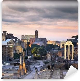 Carte da parati roma pagina 4 pixers viviamo per il for Carta da parati roma