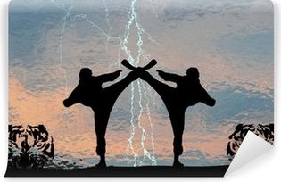Carta da Parati in Vinile Karate Thunder