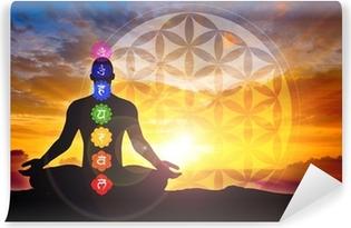 Carta da Parati in Vinile Meditazione