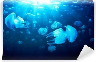 Carta da Parati in Vinile Meduse galleggianti in acqua blu profondo, Mar Nero
