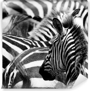 Carta da Parati in Vinile Modello di zebre