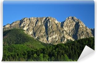 Carta da Parati in Vinile Monti Tatra - Giewont