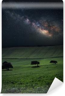 Carta da Parati in Vinile Notte con sorprendente via lattea sopra il campo verde con tre alberi