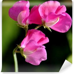 Carta da Parati in Vinile Pea profumo di fiori