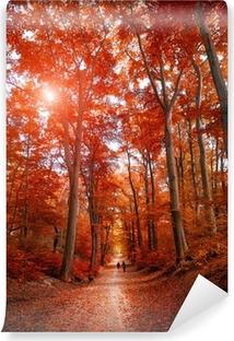 Carta da Parati in Vinile Percorso attraverso il parco in autunno la luce del sole unde