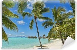 Carta da Parati in Vinile Polinesia Francese Bora Bora 6903