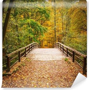 Carta da Parati in Vinile Ponte in autunno foresta