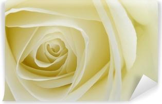Carta Da Parati Rosa Bianca : Adesivo primo piano di rosa bianca cuore u2022 pixers® viviamo per il