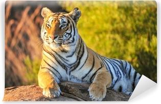 Carta da Parati in Vinile Ritratto di una tigre
