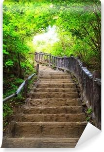 Carta da Parati in Vinile Stairway to foresta