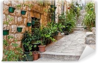 Carta da Parati in Vinile Strada stretta con verde in vasi di fiori sul pavimento