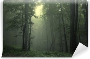 Carta da Parati in Vinile Verde bosco dopo la pioggia