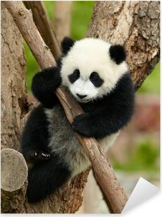 Çıkartması Pixerstick Ağacın üzerinde dev panda bebek