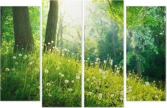 Cuadríptico Naturaleza Primavera. Hermoso paisaje. Hierba verde y árboles